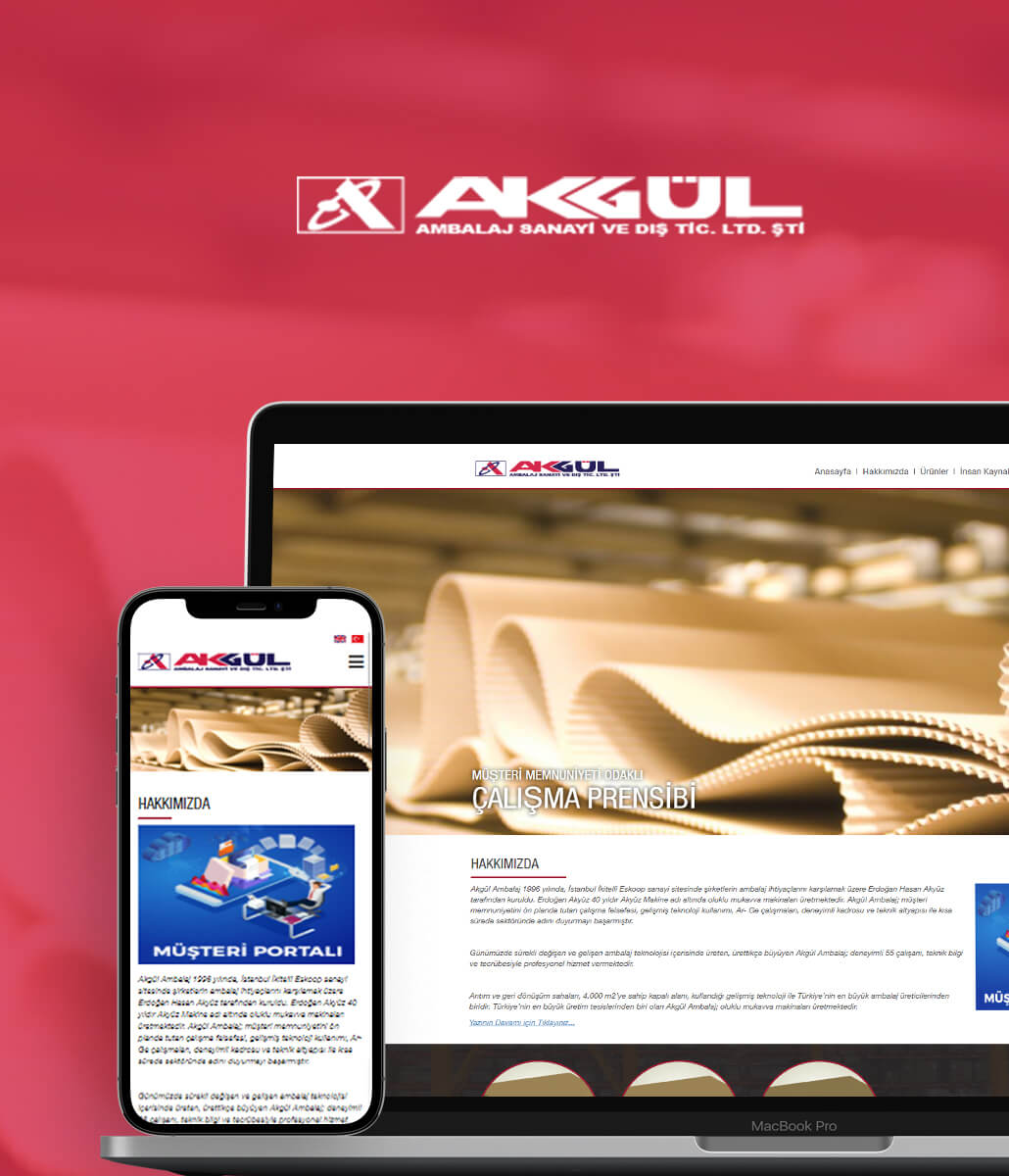 Akgül Ambalaj Web site tasarımı